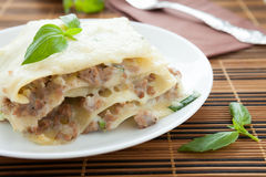 Homemade lasagna with béchamel sauce and mozzarella Royalty Free Stock Image
