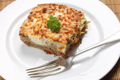 Homemade lasagne verdi Stock Photos