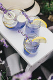 Homemade lavender lemonade with fresh lemons on a white wooden tray Royalty Free Stock Photography