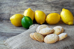 Homemade lemon cookies with lemons in the back Royalty Free Stock Photos