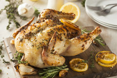 Homemade Lemon and Herb Whole Chicken royalty free stock photography