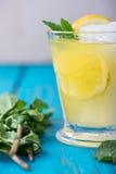 Homemade lemon lemonade with fresh mint Stock Photo