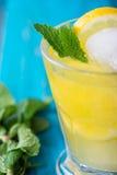 Homemade lemon lemonade with fresh mint Royalty Free Stock Photos
