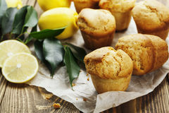 Homemade lemon muffins Stock Photography