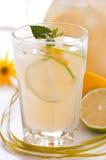 Homemade lemonade Stock Photography