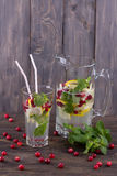 Homemade lemonade with cranberry and mint Stock Image