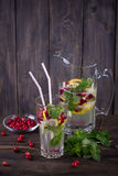 Homemade lemonade with cranberry and mint Stock Images