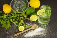 Homemade lemonade with fresh lemon and mint. Cool, refreshing dip in the hot summer. Stock Photos