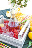 Homemade lemonade with fresh red currant Stock Image