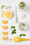 Homemade Lemonade. Ingredients from Above Royalty Free Stock Photos