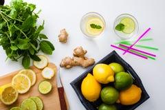 Homemade lemonade. Stock Photos