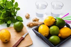 Homemade lemonade. Stock Image