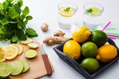Homemade lemonade. Stock Photography