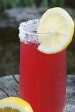 Homemade lemonade Royalty Free Stock Photos