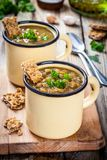 Homemade lentil soup with crispbread and parsley Royalty Free Stock Images
