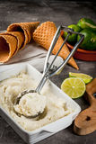 Homemade lime sorbet Stock Images