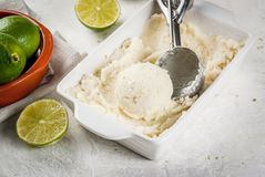 Homemade lime sorbet. Homemade lemon ice cream. Refreshing lime sorbet in a bowl with a spoon for ice cream. On a white concrete table. Copy space Stock Photos