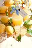 Homemade Limoncello Royalty Free Stock Image