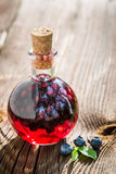 Homemade liqueur in a bottle with alcohol and blueberries Royalty Free Stock Photo