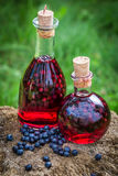 Homemade liqueur in a bottle with blueberries and alcohol Stock Photos