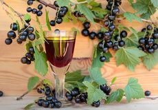 Homemade liqueur made from black currants and fresh berries. Royalty Free Stock Photo