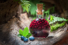 Homemade liqueur made of blueberries and alcohol Stock Photo