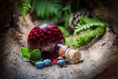 Homemade liqueur made of blueberries and alcohol in summer Stock Photos
