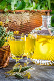 Homemade liqueur made ​​of honey and lime in garden Royalty Free Stock Photos