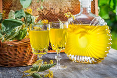 Homemade liqueur made of honey and lime in summer garden Royalty Free Stock Photos