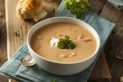 Homemade Lobster Bisque Soup Royalty Free Stock Photography