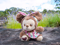 Homemade lovely brown bear doll sitting outdoor Royalty Free Stock Photos