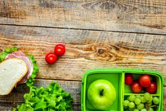 Homemade lunch with apple, grape and sandwich in green lunchbox Royalty Free Stock Image