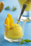 Homemade mango ice cream Royalty Free Stock Photos