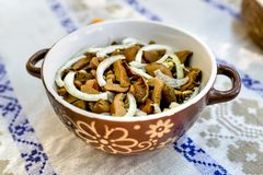 Homemade marinated mushrooms . Organic food stock image