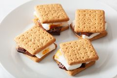 Homemade marshmallow s`mores with chocolate on crackers Stock Photography