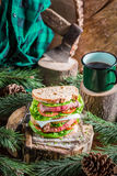 Homemade meal of sandwiches and coffee Stock Images