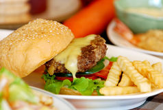 Homemade meat burger. Homemade meat burger and french fries Royalty Free Stock Photo