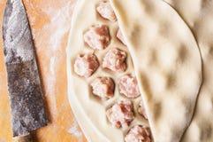 Homemade Meat Dumplings - russian pelmeni Royalty Free Stock Photo