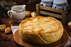 Homemade meat pie decorated with fall leaves Stock Photography