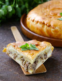 Homemade meat pie with potatoes Stock Photos