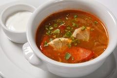 Homemade meat soup, Solyanka or saltwort. Vegetable soup Stock Photo