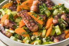 Homemade Mediterranean Octopus Salad stock image
