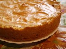 Homemade meringue pie. Royalty Free Stock Photo