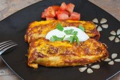 Homemade Mexican Enchiladas Stock Photography