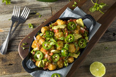 Homemade Mexican Tater Tot Nachos Tachos. With Cheese Cilantro and Jalapeno Stock Image