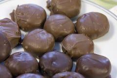 Homemade milk and dark chocolate candy Royalty Free Stock Image
