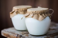 Homemade milk yogurt in jars stock image