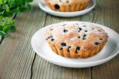 Homemade mini fresh blueberry pies on white plate Stock Image