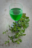 Homemade mint drink Royalty Free Stock Image