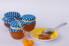 Homemade mirabelle jam Royalty Free Stock Photography